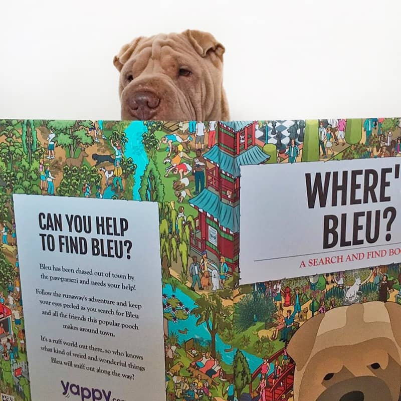 Bleu with his Personalised Where's Book