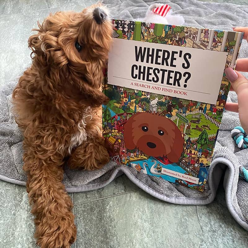 Chester with his Personalized Where's Book