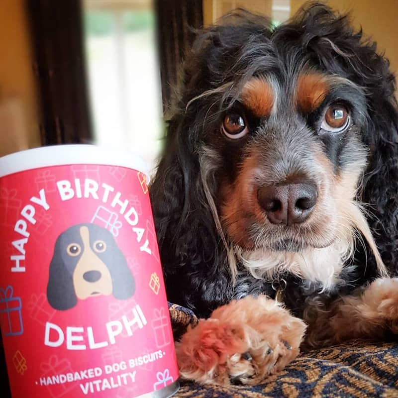Delphi with her Personalised Birthday Treats