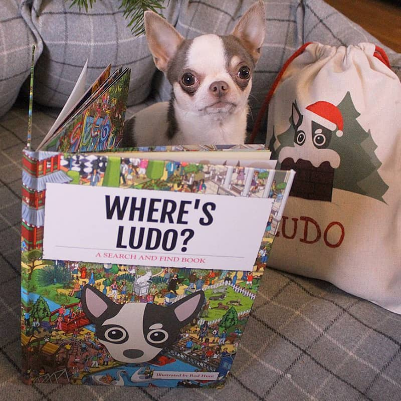 Ludo with his Personalised Where's Book and Christmas Sack