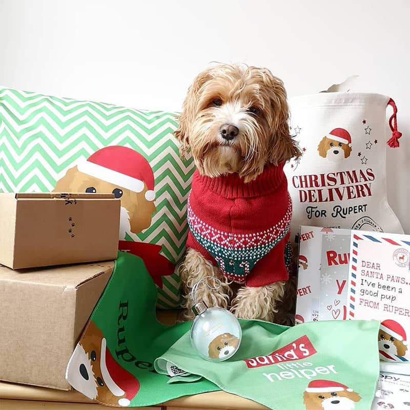 Rupert with his Personalized Christmas Yappy Products