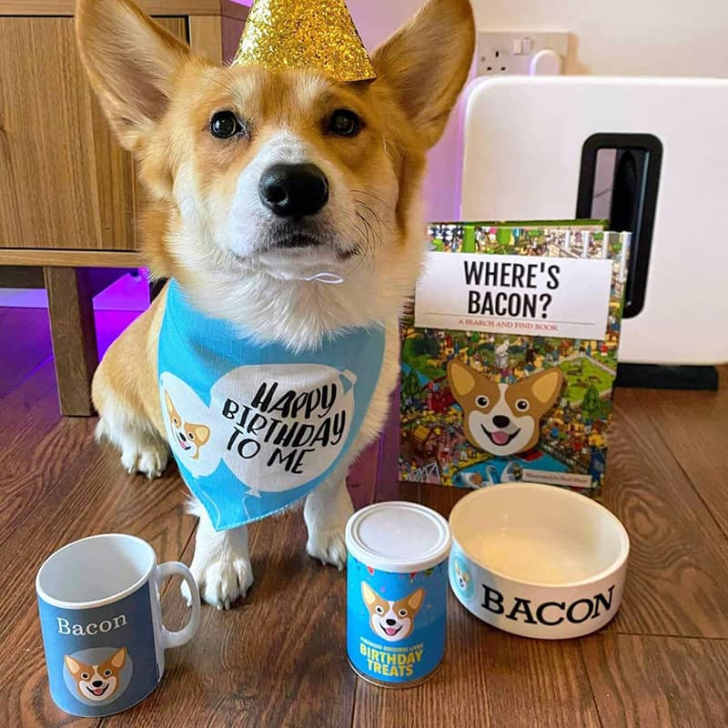 Bacon with his Birthday Bandana, Mug, Treats, Bowl and Book