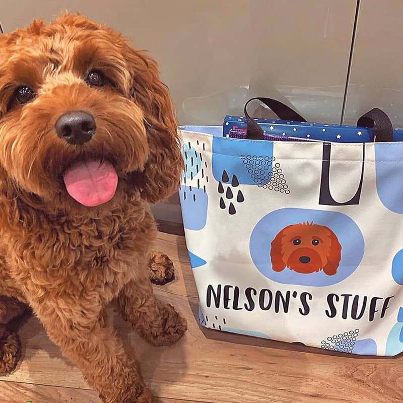 Nelson with his Personalized Bag