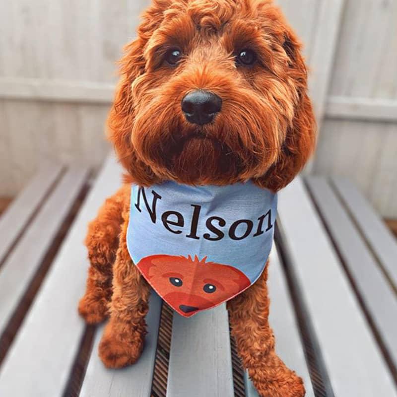 Nelson wearing his Personalized Icon Bandana