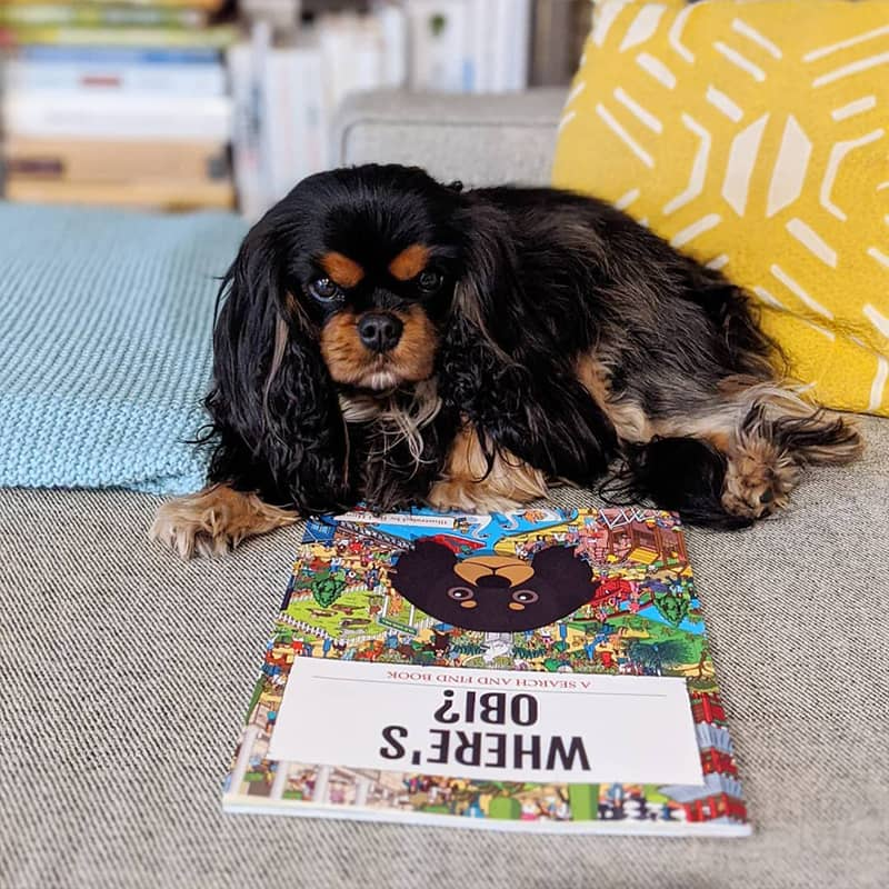Obi with his Personalized Where's Book