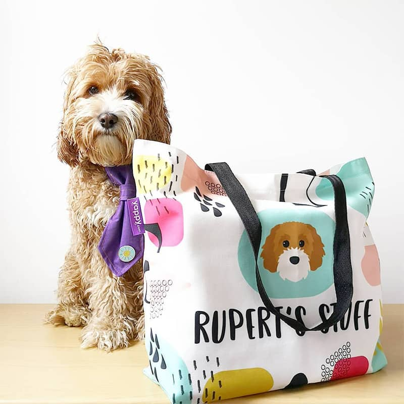 Rupert with his Personalized Bag