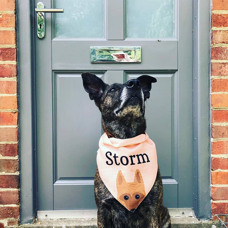Storm wearing her Personalized Icon Bandana