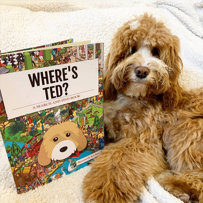 Ted with his Personalized Where's Book